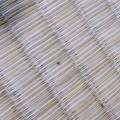 畳に虫が大量に出てきた理由